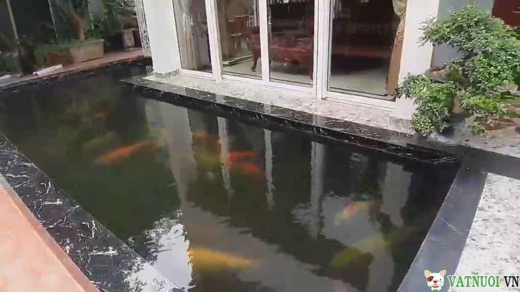 Cách làm trong nước hồ cá ngoài trời