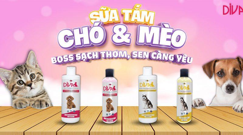 Sua Tam cho cho meo vatnuoi.vn