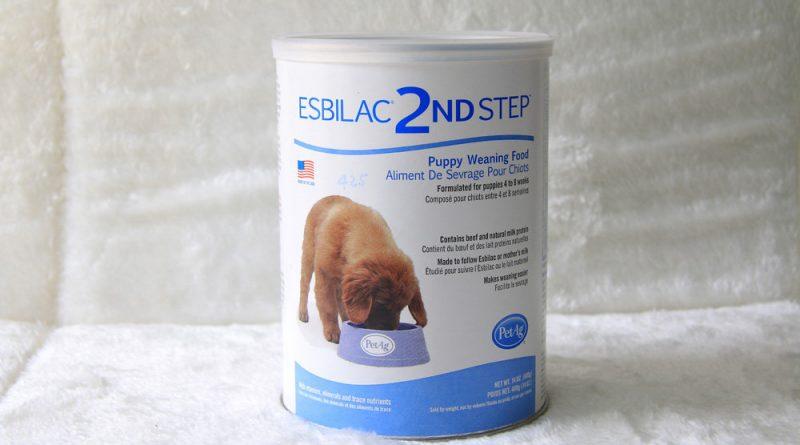 Sữa Bột Cho Chó EsbiLac 2ND Step