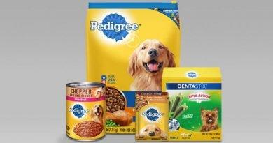 chọn thức ăn cho chó pedigree