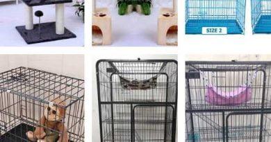 mua đồ cho thú cưng lồng chuồng