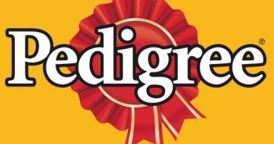 thương hiệu thức ăn cho chó pedigree
