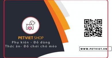 cửa hàng pet viet bán thức ăn cho chó uy tín tại hà nội