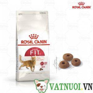 hạt royal canin cho mèo vận động nhiều fit 32
