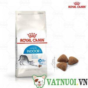 thức ăn hạt royal canin indoor cho mèo ít vận động