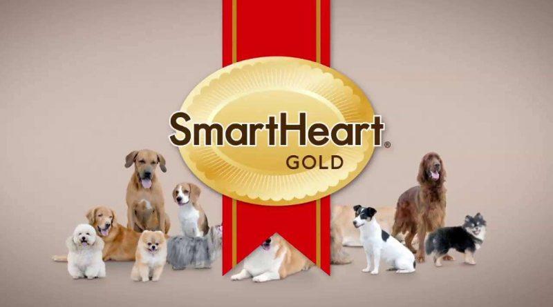 smartheart brand