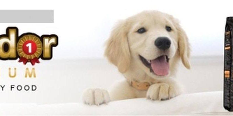 thương hiệu thức ăn cho chó ganador