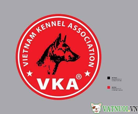 vka logo VATNUOI